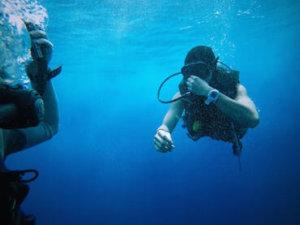 モルディブのダイビング