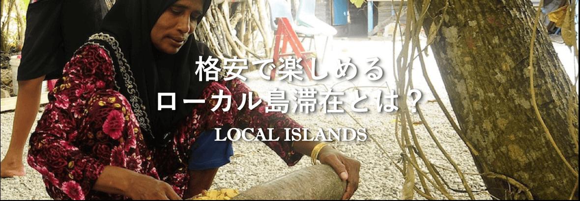 ローカル島の基本情報